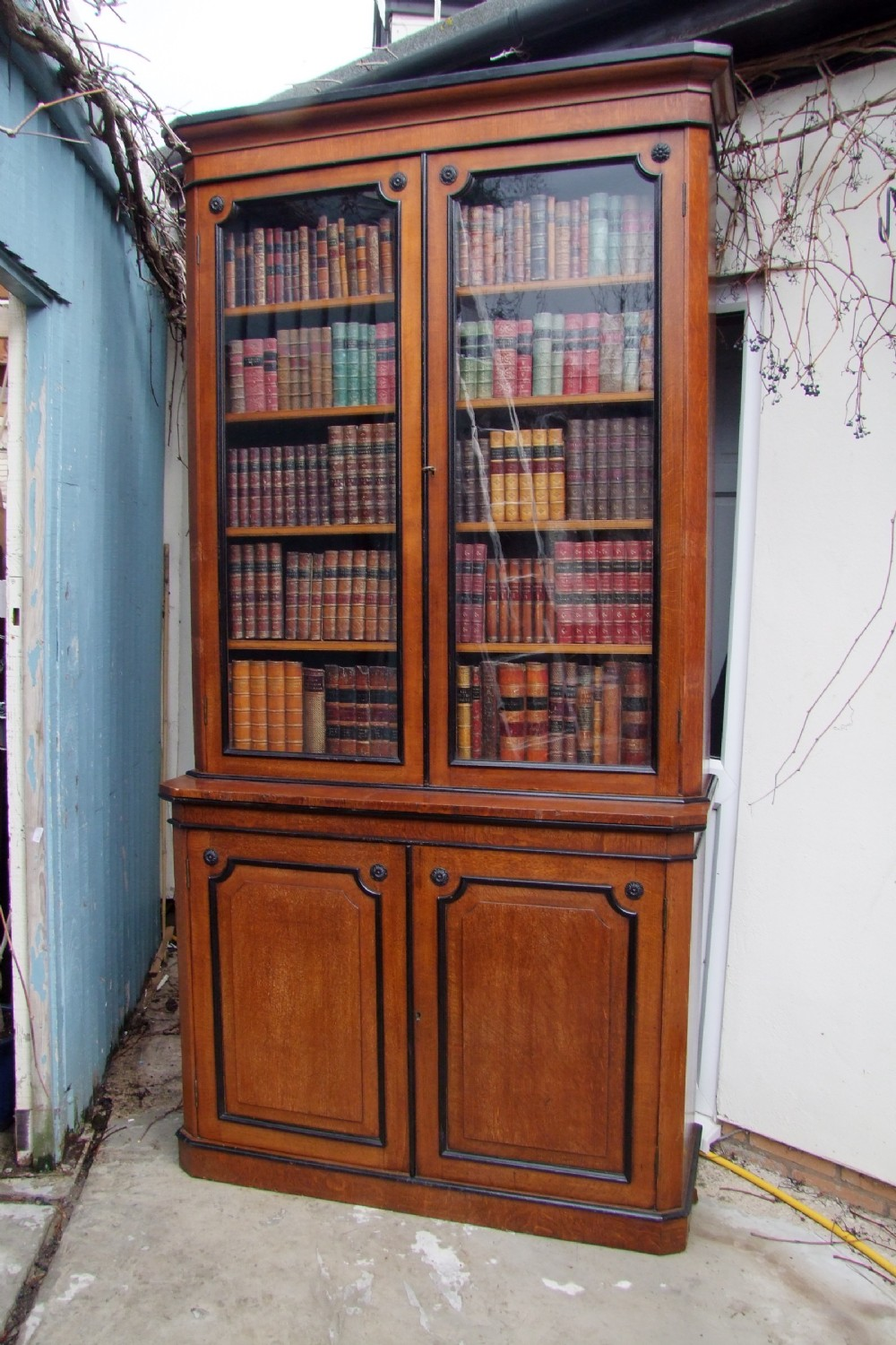 19th century golden oak library bookcase with ebonised detail